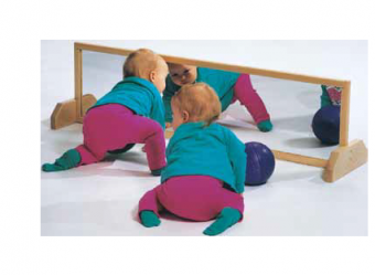 Horizontal Mount Mirror
